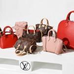 Louis-Vuitton Bag-Collection
